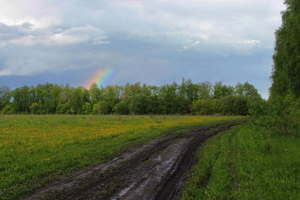 Совсем небольшой кусочек радуги вспыхнул и быстро угас вместе со случайно пробившимся лучом солнца.