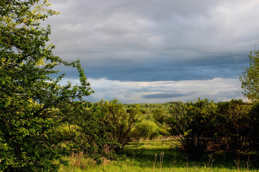 Тоже волшебное сочетание: свежая июньская зелень, вечерние лучи солнца и синие облака.