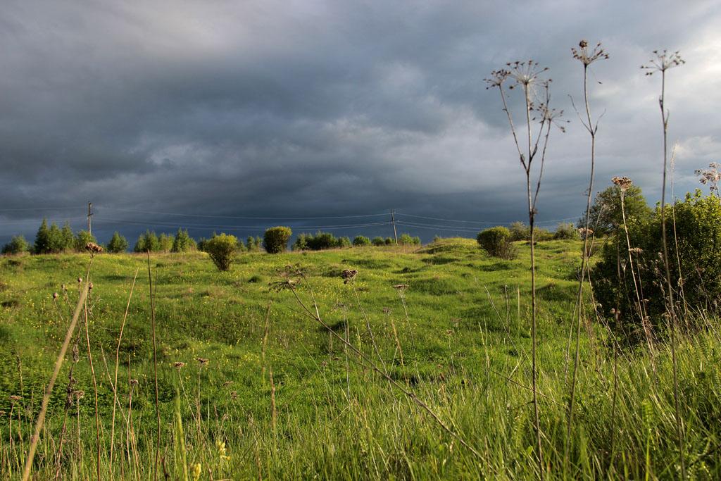 Надвигается ливень. В лучах заходящего солнца дождевые облака выглядят особенно эпично.